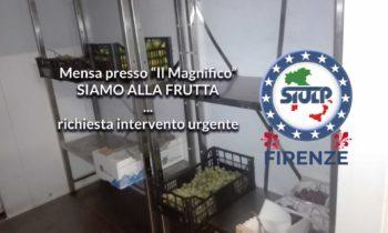 """Mensa si servizio presso """"Il Magnifico"""" – Criticità urgenti."""